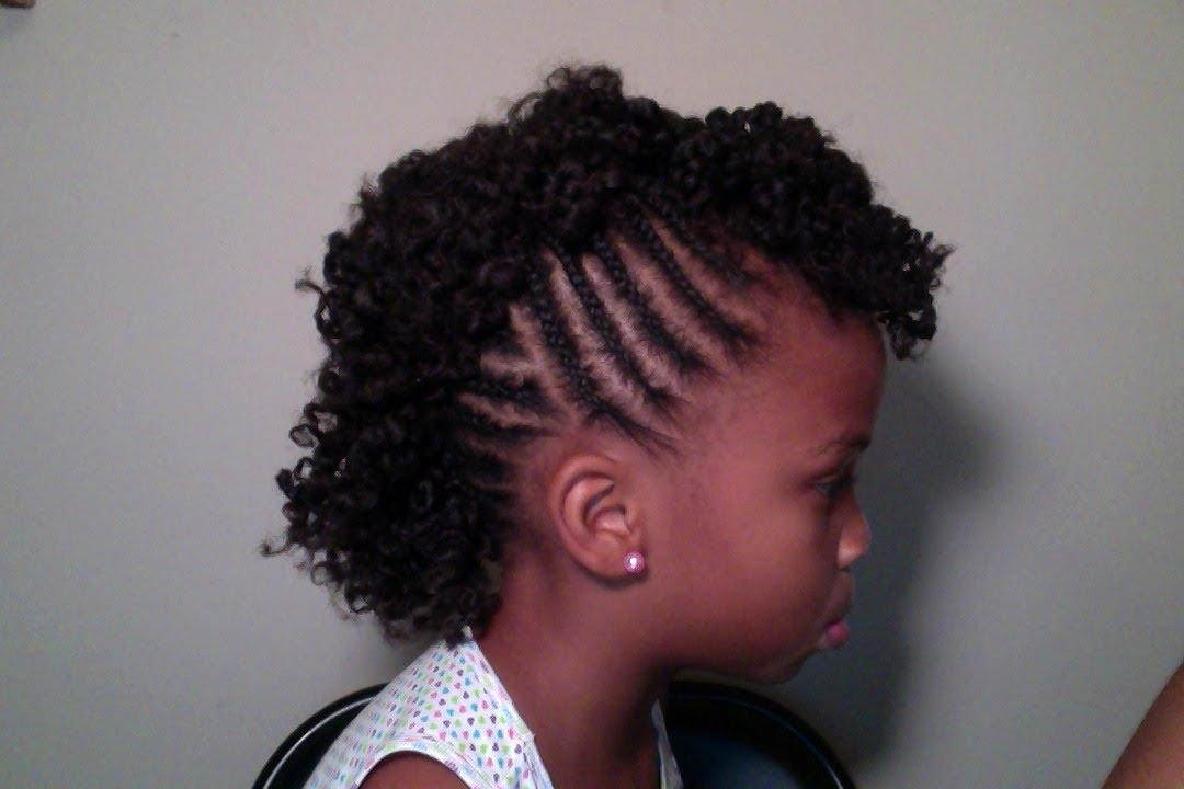 Allthingscutegirly Braids For Natural Haircare Hair