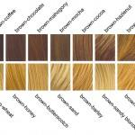 Are Many Shades Brown