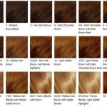 Blonde Hair Chart From Your Home Different Shades Red