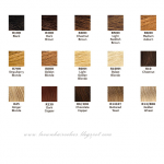 Brown Hair Colors Coloring Tips