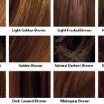 Brown Luminous Blue Black Loreal Excellence Creme Hair Color Chart