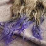 Brown Ombre Hair Color Lilac Dip Dye