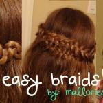 Displaying Images For How Cool Braids Long Hair