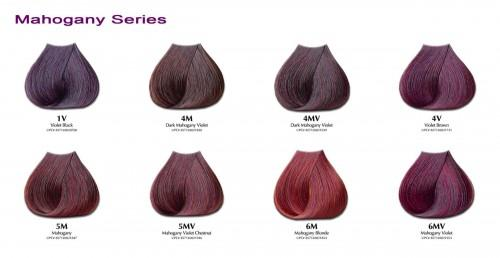 Featuressimple Professional Hair Color Results