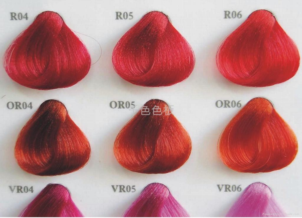 Hair Color Swatch Card