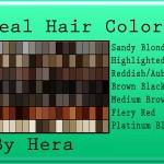 Hair Colors Swatches