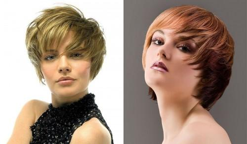 Hair Trends Short Layered Haircuts For Women Best Hairstyles