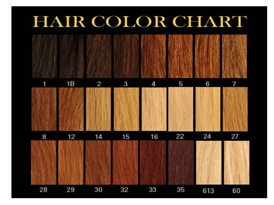 Home Price List Texture Color Chart Order Hair