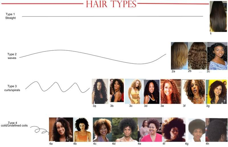 How You Feel About Hair Type Chart Think Its Empowering