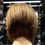 Inverted Bob Haircut Back View Hairstyles