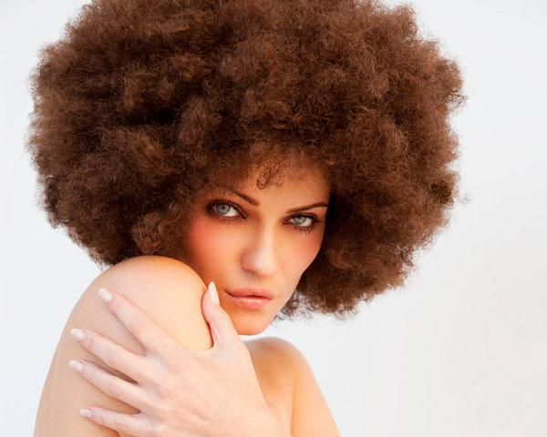 Majestic Afro Hairstyles