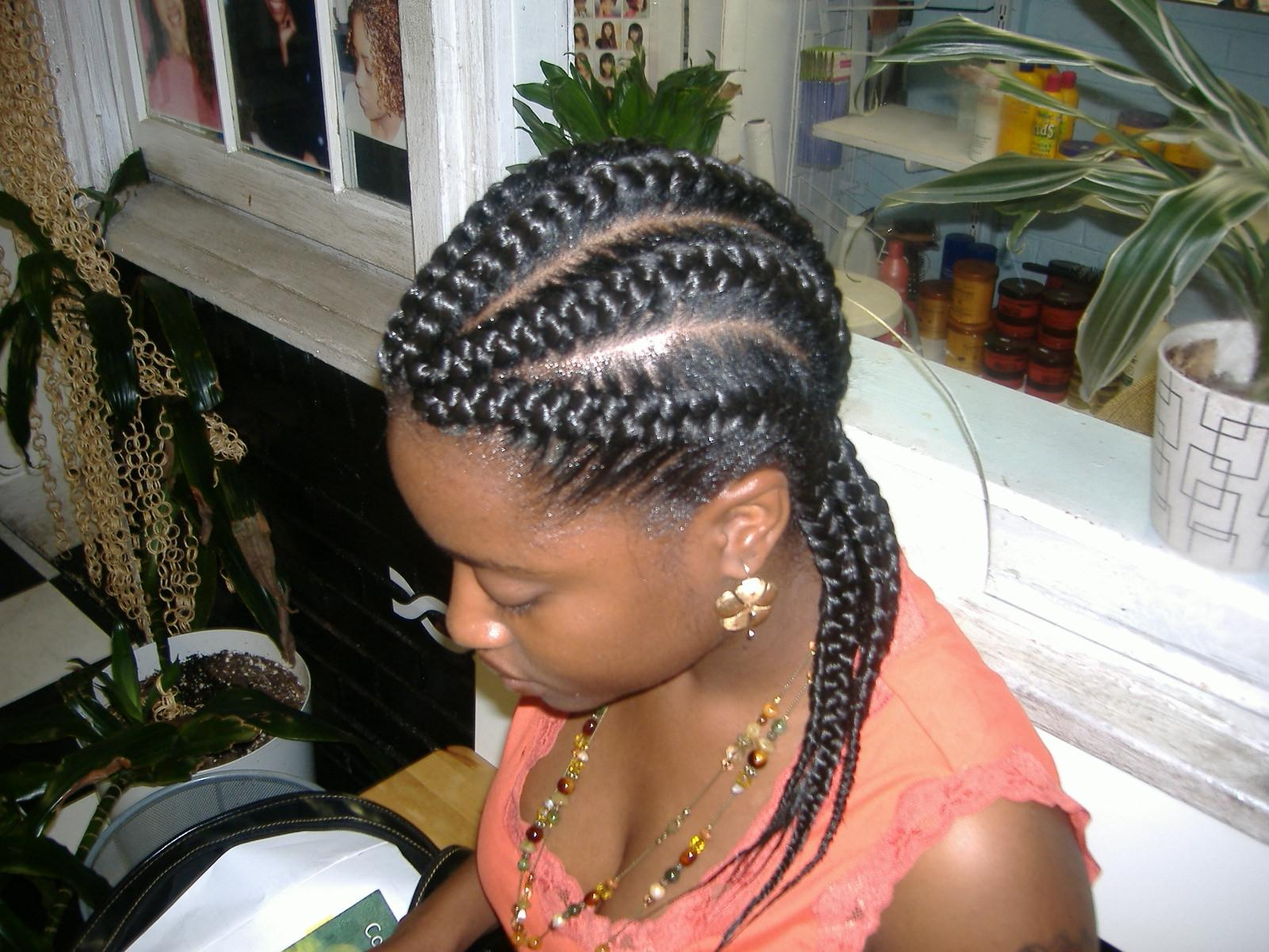 Micro Braids Pictures