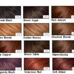 Natural Hair Dye Colors Hairstyles