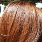 Not Liking Orange Two Toned Ness Palty Honey Brown