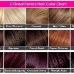 Oreal Feria Hair Color Chart