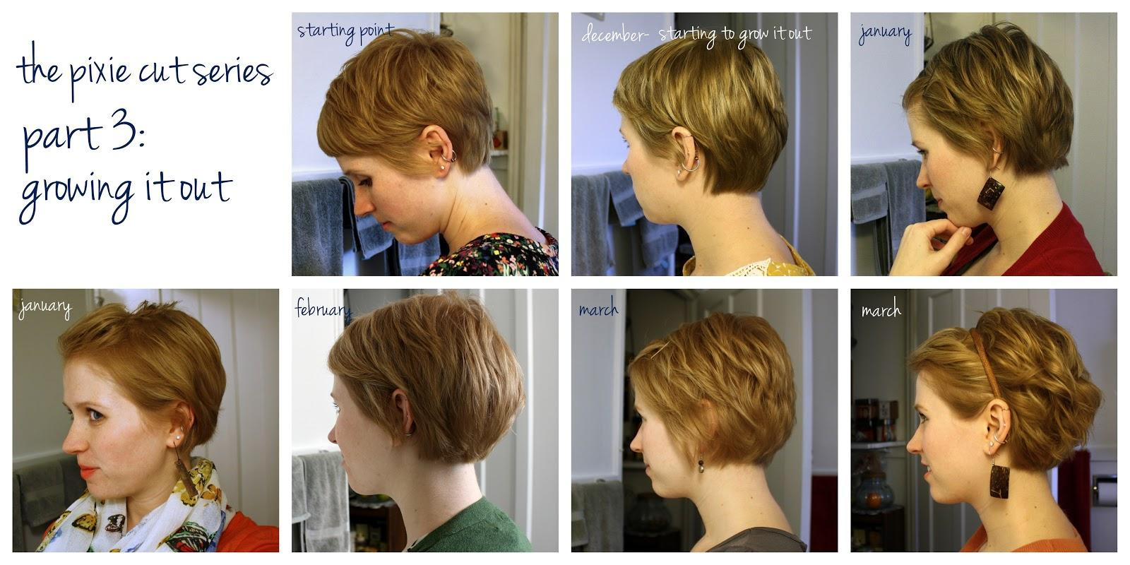 Pixie Cut Series Part Growing Out Sophie Hairstyles 36574