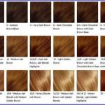 Posts Related Light Caramel Brown Hair Color Chart