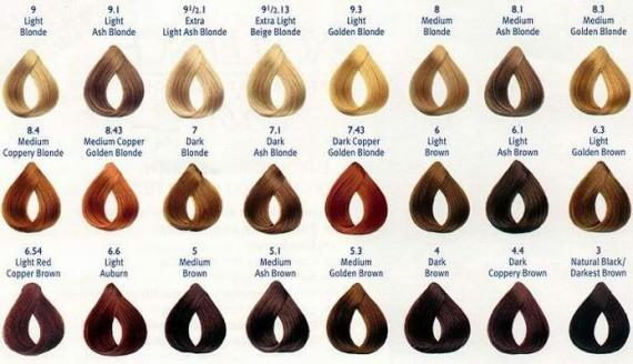 Related For Honey Blonde Hair Color Chart