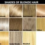 Shades Blonde Hair