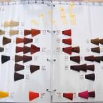 Thouss Color Swatches Hair Dye Chart