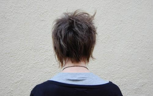 Were Some Pictures Back View Short Haircuts For Women