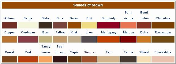 What Shade Brown Are You