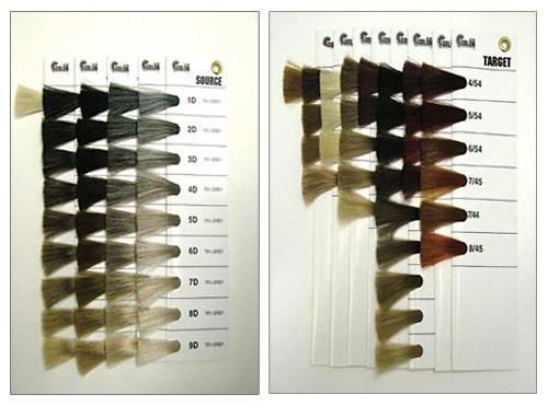 Your Fomula Requires Professional Hair Color Swatches
